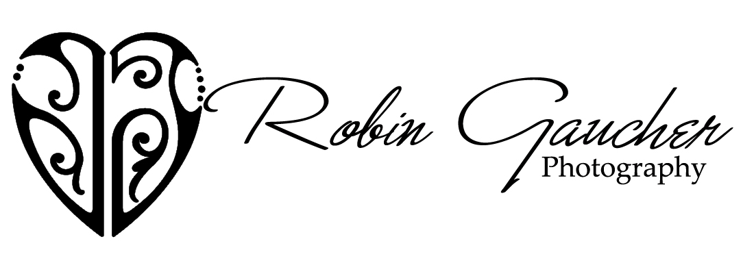 Robin Gaucher Photography Blog